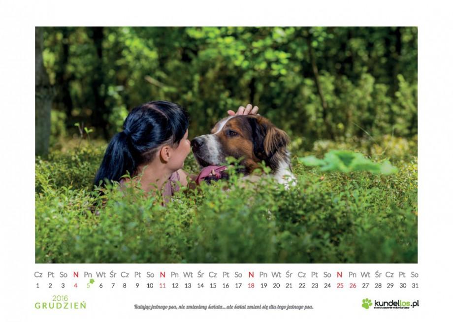 Charytatywny kalendarz 2016